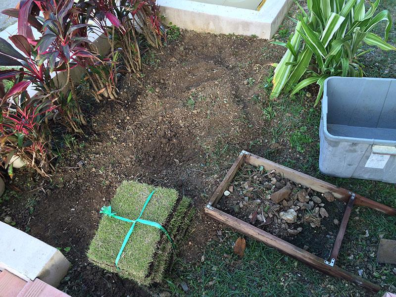 芝生を植えてみます