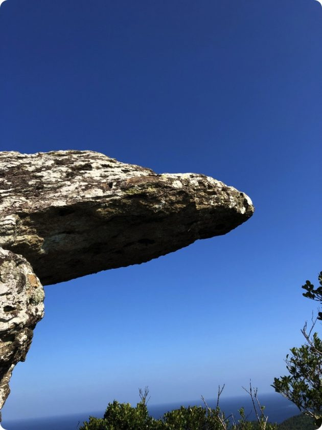 ライオンキング岩