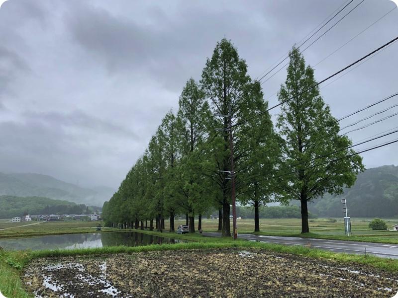 軽トラハウス、日本一周26日目。連休終わると同時の大雨