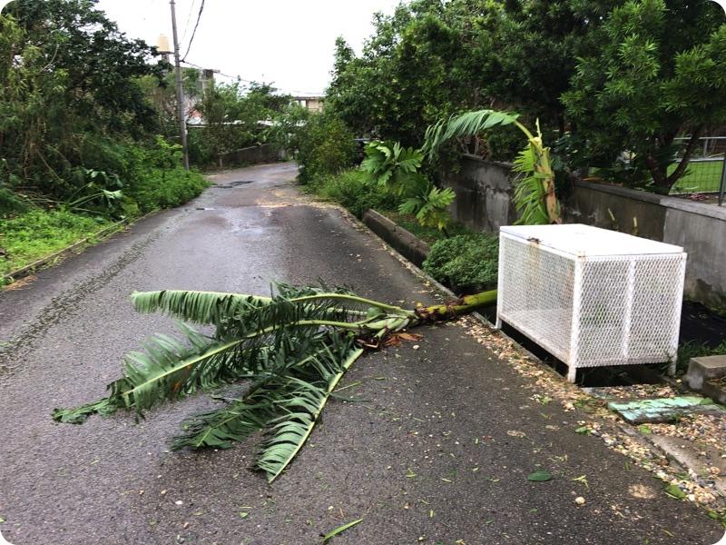 台風8号、たいしたことなかった。FM○○がき、台風時はこうすればいいよ