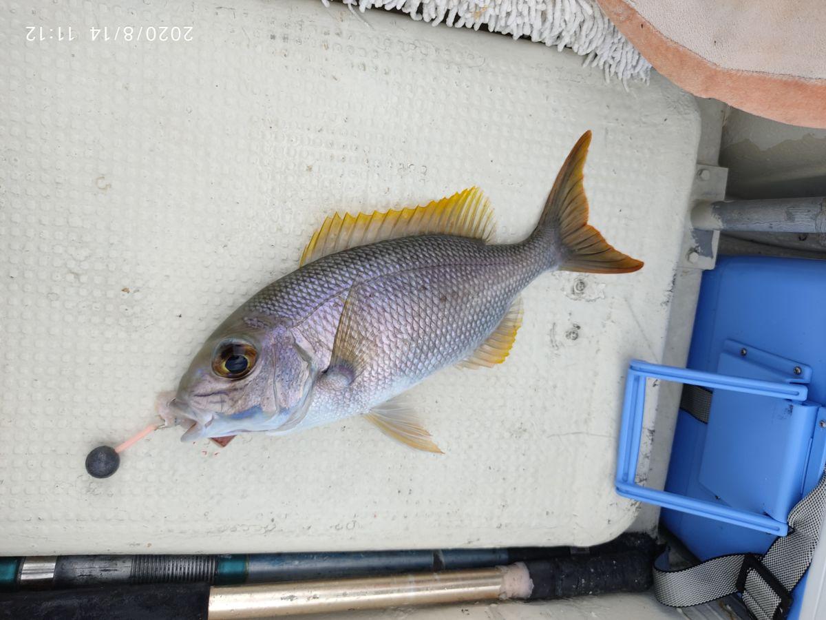 海人さんに釣りに連れて行ってもらった