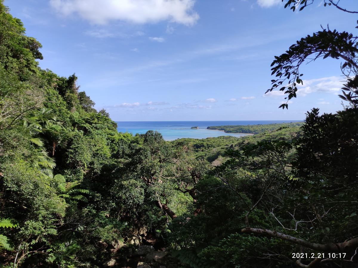 久しぶりに西表島探検