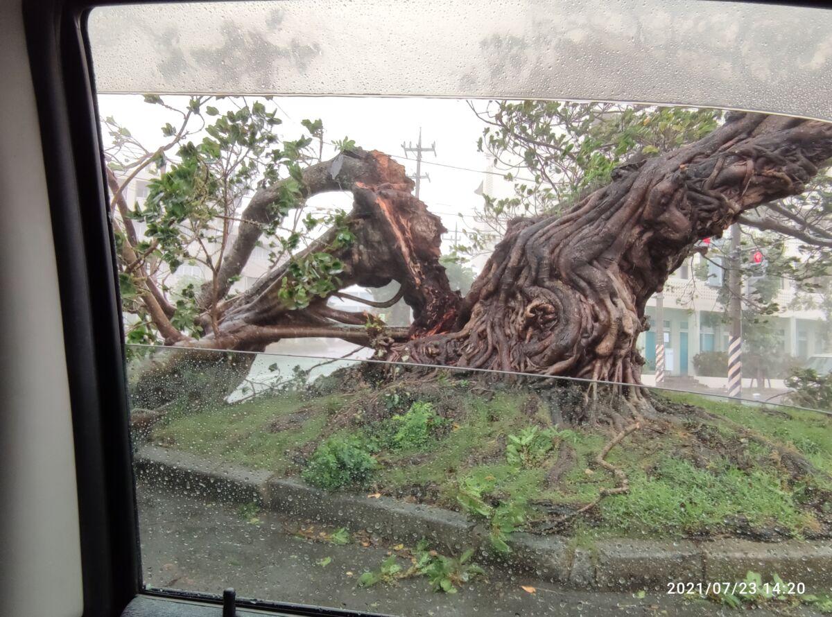 台風6号経過報告