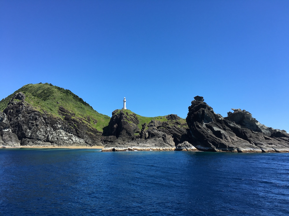 御神崎の沖合でカメみました